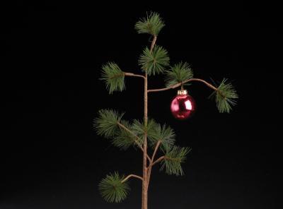 Feliz Navidad 2.012